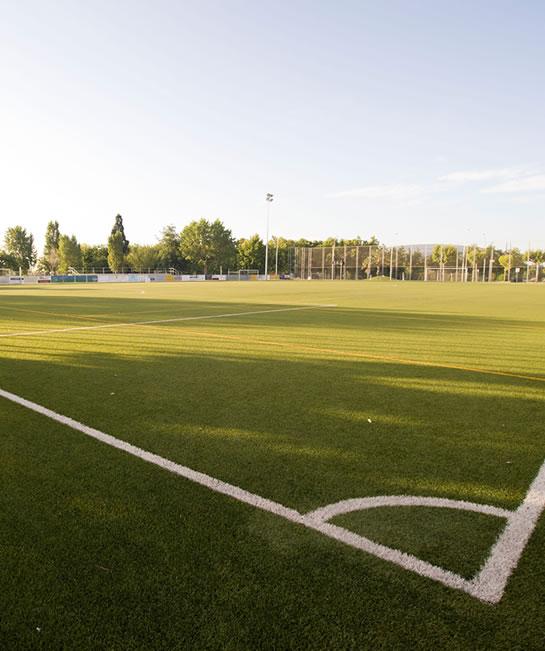 Asociación Catalana de Fútbol
