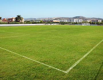 Campo Bovalar